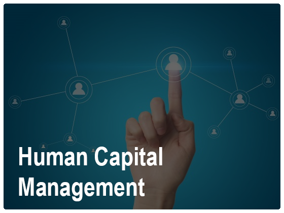 Human Capital Consultancy Services