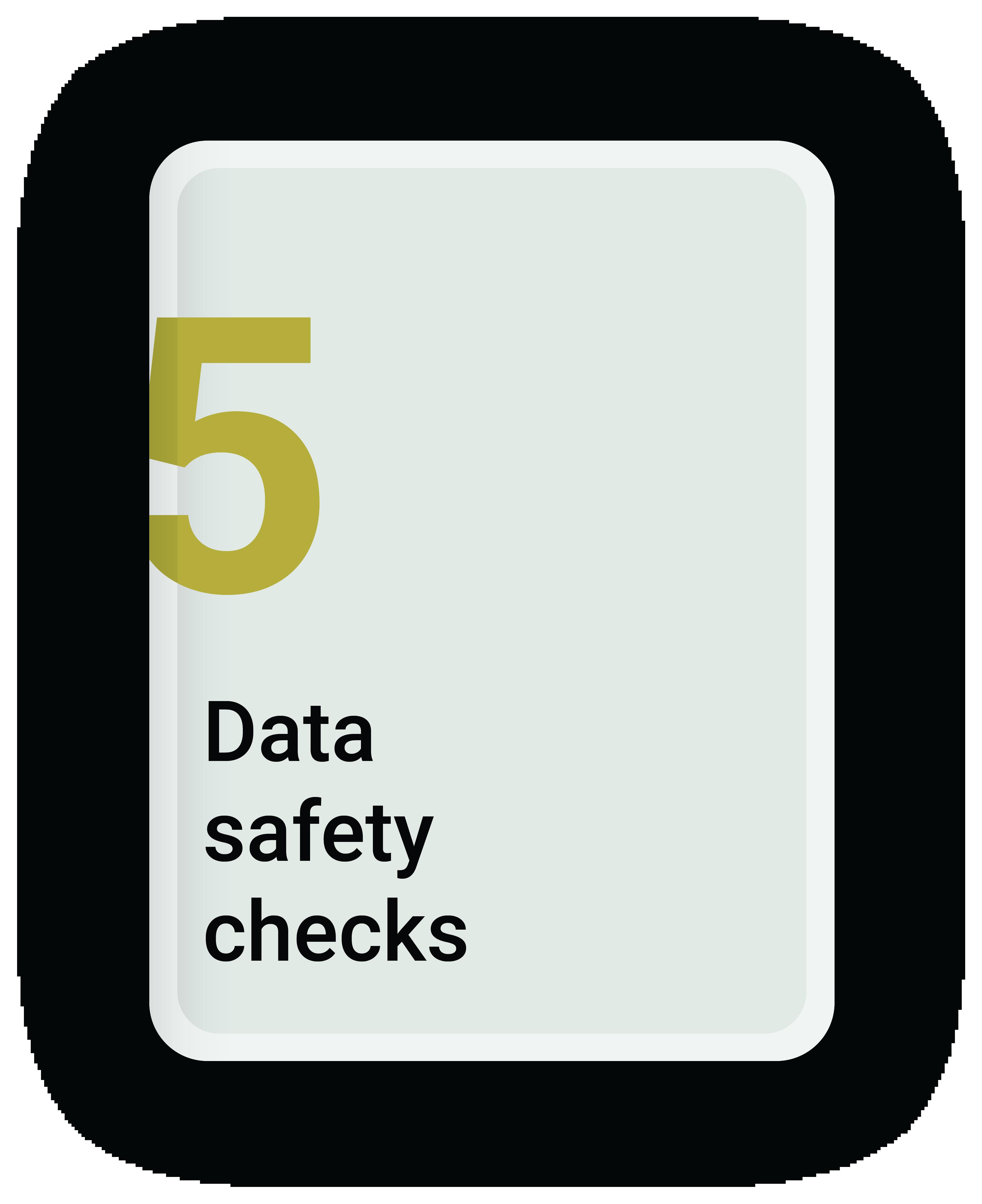 Data Safety Checks